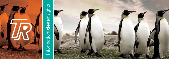 TR_blog_penguin