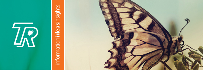 TR_blog_butterfly