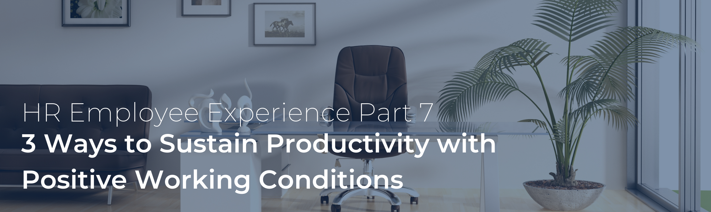 3 Ways to Sustain Productivity with Positive Working Conditions